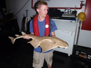 David holds an Angel Shark caught on the last haul back. (photo courtesy of David Seay)