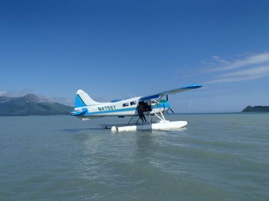 Bear tour seaplane