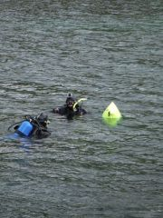 Brrr, it's chilly work diving in arctic waters.  The divers are investigating the gauge and removing the damaged hose