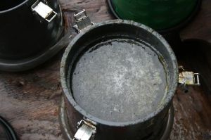 Plankton soup