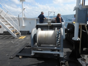 Line on the winch
