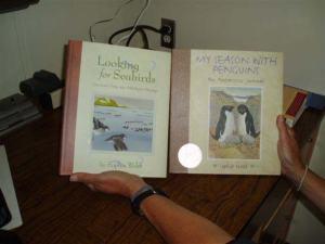 Seabird illustrations, Sophie Webb