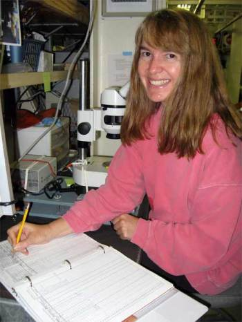 Part of Tracy's day is spent in front of a microscope keying out different krill species.