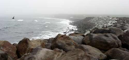 A brief glimpse at the coast as the surf pounded.