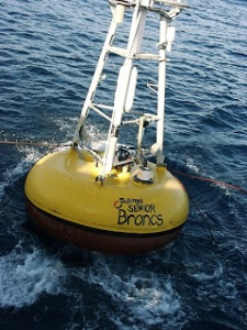 Broncs buoy deployed!