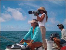 Cynthia Vanderlip and her team conduct spinner dolphin surveys in the lagoon around Green Island at Kure Atoll.