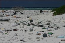 The remoteness of the area does not protect the islands from the prevailing ocean currents and man's trash.