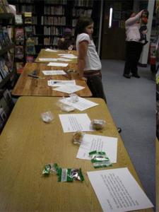 I created activity stations for the elementary and middle school students.