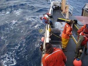 Crew setting gear