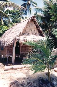 Peace Corps hut