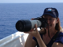 We use these cameras to take close up shots of the marine mammals.