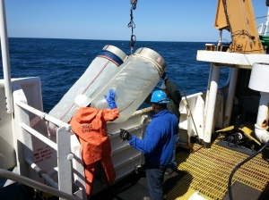 Me helping to bring the Bongo net back onto the ship for cleaning. (Photo credit Chris)