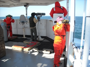 "Me all dressed up in the ""Mustang' suit helping the team keeping an eye out for whales."