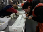 Betsy and volunteer sorting the organisms from the Beam Trawl.