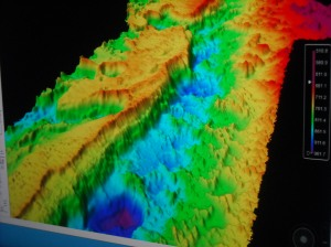 Top View of Bathymetric image of Blake Plateau