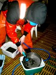 The bottom soil samples get several washings through sieves before they can be processed.