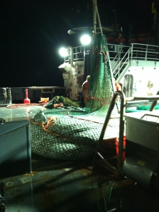 picture of trawl net