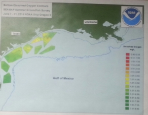 Real Time Dissolved Oxygen Map from the Oregon II