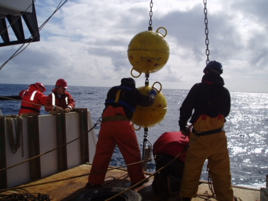 Picture of the crew retrieving a mooring buoy