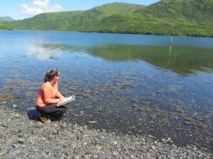 Dana Clark Tide Observations