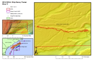 Multibeam (MB) Map showing iceberg scours and ROV dive track.  Image courtesy of NOAA and Harbor Creek.  June 2014.