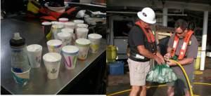 Styrofoam cups predive