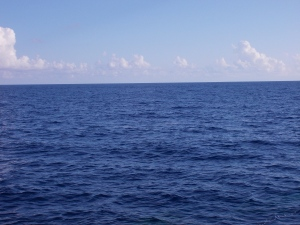 The beautiful blue ocean today~Blue skies and blue waters in the Gulf of Mexico.