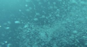This is what the camera sees as it is sinking to the bottom of the ocean.