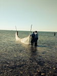 Students collected physical, biological and chemical information on Long Island Sound for Project Periphyton.