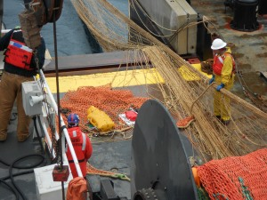 The crew are beginning to release the trawl net.