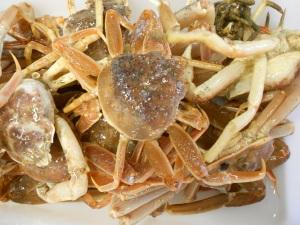 Lots of crabs!