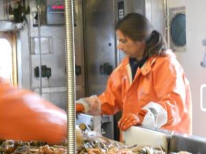 Alex De Robertis working in the wet lab.