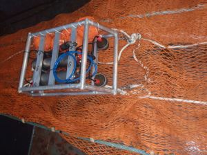 Cam trawl attached to trawl net