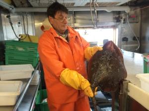 Mikhail helping process a trawl