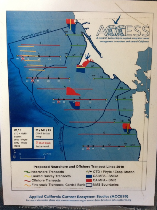 Transect Lines for the ACCESS Cruise