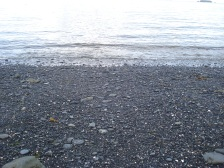 A black sand beach on the Kodiak Coast Guard Base.