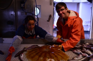 Survey Technician Alyssa and Oceanographer Nate pull a giant jellyfish out of a pile of pollock!