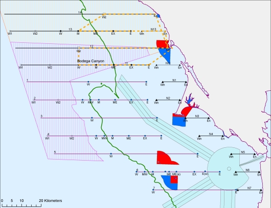 These are the paths, or transect lines, taken by our ship on our cruise.