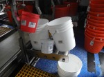 Containers Small, Gallon, 10 Gallon, 1.47 Cubic Feet Baskets