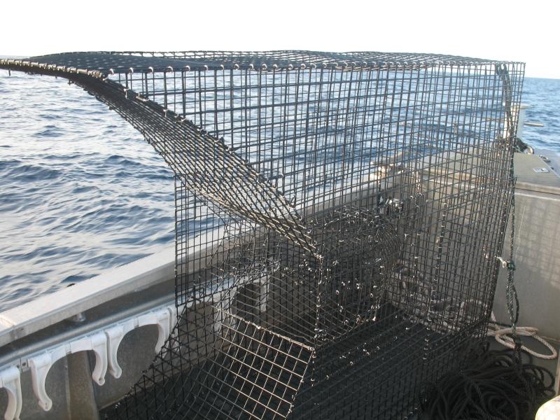 modified chevron trap