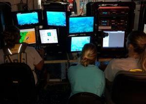 ROV monitors