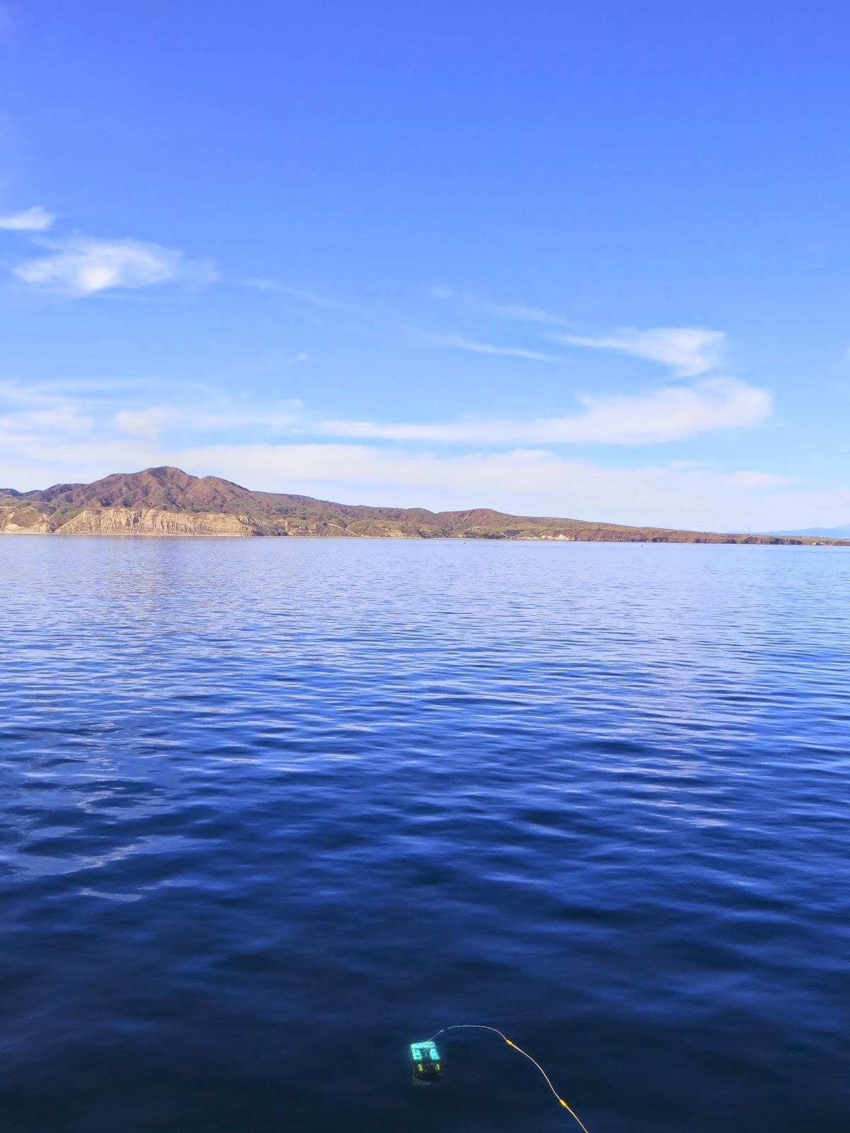 Santa Cruz Island and the ROV