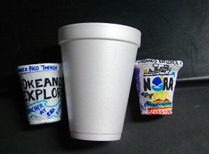 Cups after dive