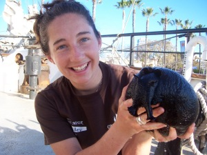 Getting ready to teach kids about a giant sea hare, something we will NOT catch during the bottom trawl survey!