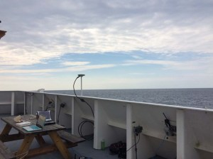 Whale Observer Station on the Flying Bridge. Photo by: DJ Kast