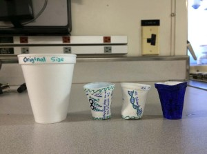 Cups compared to the original size (back). Photo by DJ Kast.