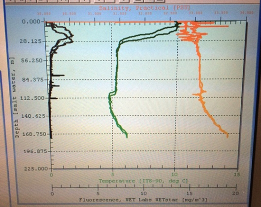 CTD profile.  The black line represents fluorescence, the green line is temperature, and the orange line is salinity.   All values increase to the right.  The duplication is due to the instrument recording measurements on the way down (the data used) and on the way up.