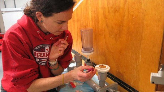 Jessica removing the filter with sterilized tweezers to place into a labeled petridish. Photo by: DJ Kast