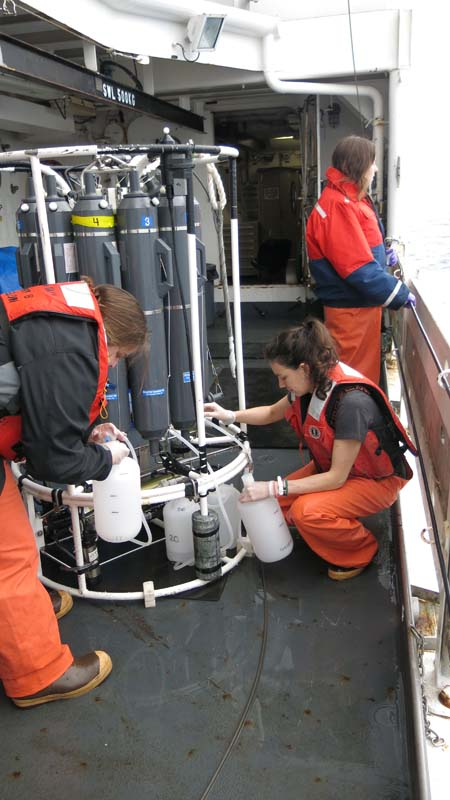 DJ and Jessica collect her 4 L of seawater from the Niskin bottle in the Rosette. Photo by Jerry P.