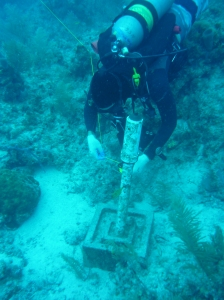 Member of the dive team servicing a VR2 receiver stand (Photo by Kelsey Jeffers, NOAA)